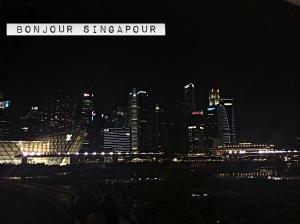 Que faire à singapour Marina Bay Sands